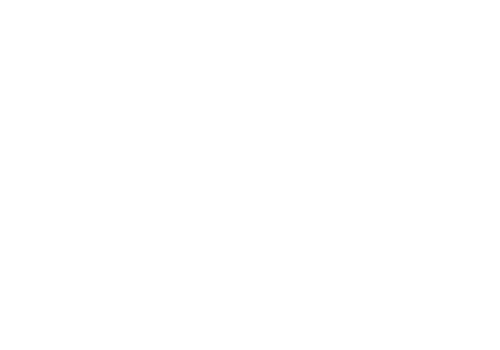 Nivis